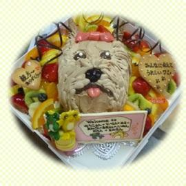 可愛い愛犬がケーキに!!